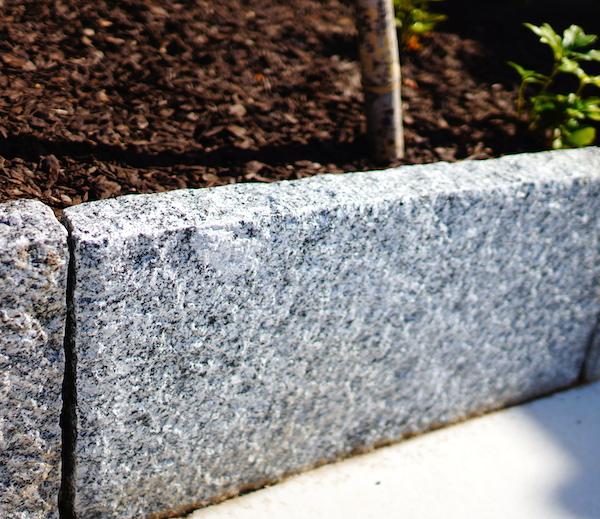 花壇はレンガブロックじゃなく御影板石。ヤマモミジの株立ち