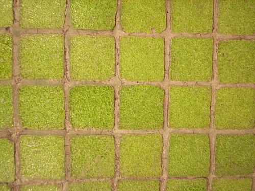 キッチンの床材はタイルと無垢材でどう違う?汚れ方や掃除は?