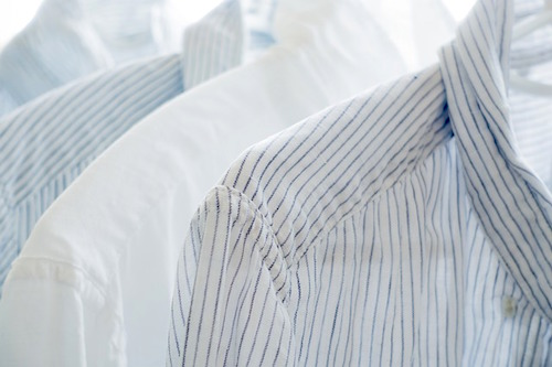衣類のカビ