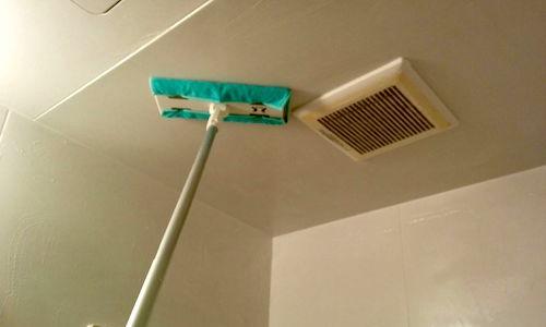 お風呂掃除の天井のカビ取りを確実に落としたい!コツとカビ予防法