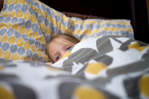 電気毛布の電気代1日いくら?つけっぱなし大丈夫?消費電力と使い方。