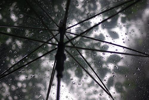 ビニール傘 捨て方どうする??分解は必要?地域によって違いはある?