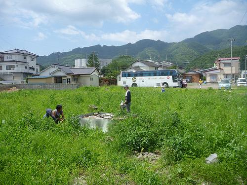 除草剤ラウンドアップはどんな危険性が??庭に撒くと残留して悪影響が!?